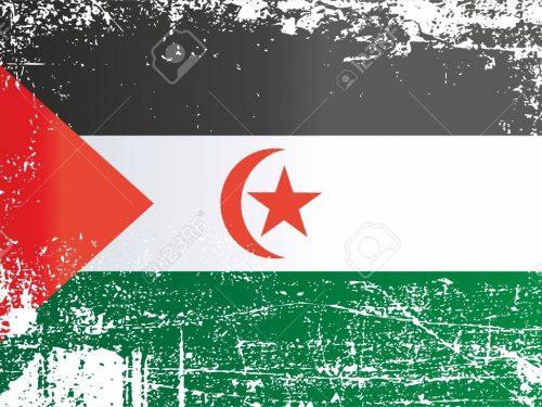"""""""Il Marocco nasconde la realtà comprando politici e giornalisti di vari Paesi"""""""