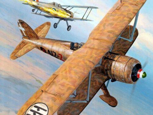 AOI: la lotta per la superiorità aerea su Cheren